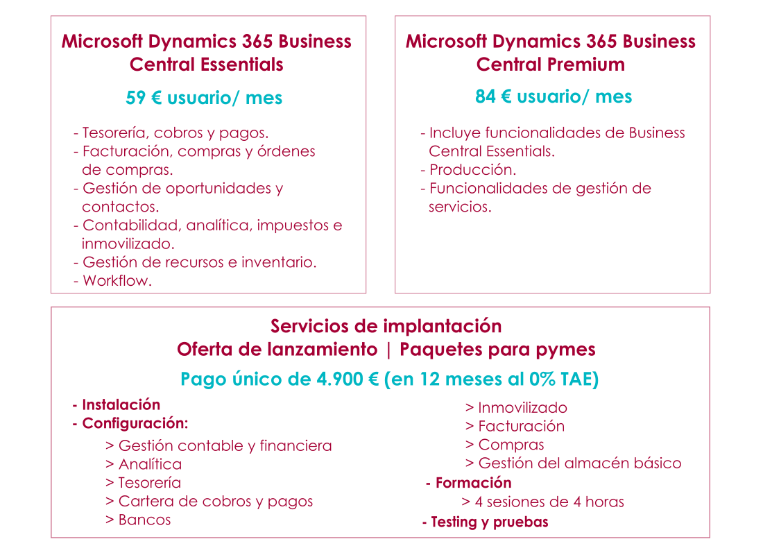 Microsoft Dynamics 365 Business Central Oferta Especial
